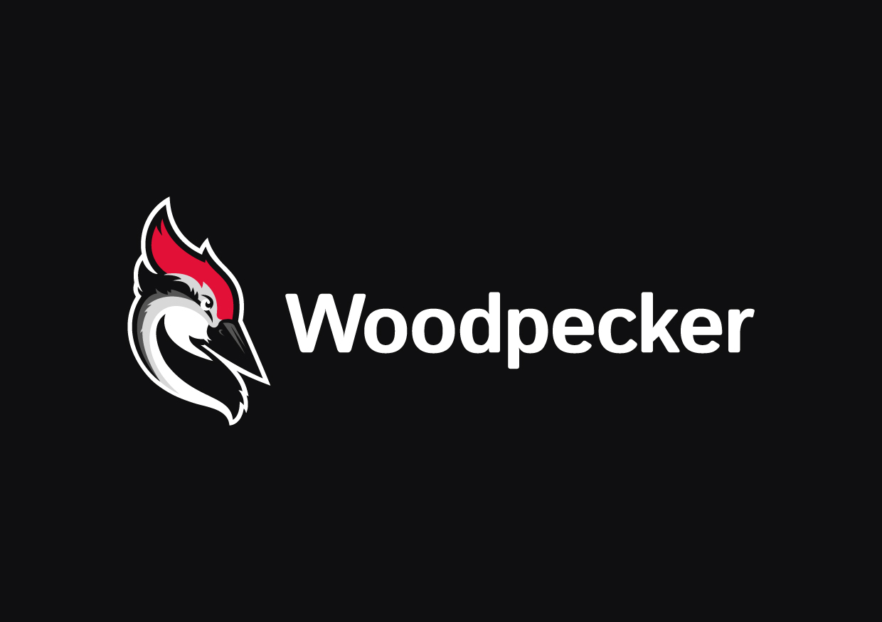 how we came up with the name amp logo for woodpeckerco