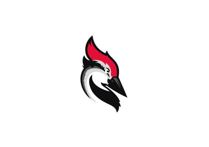 Woodpecker.co_logo