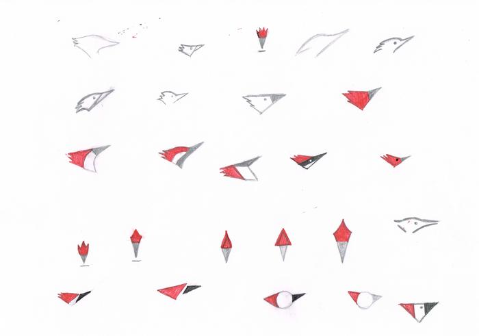 woodpecker-sygnet-sketches1