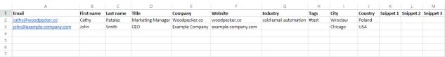 Example CSV Prospect Base Woodpecker